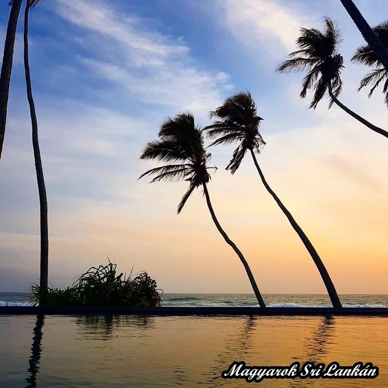 indiai óceán pálmákkal
